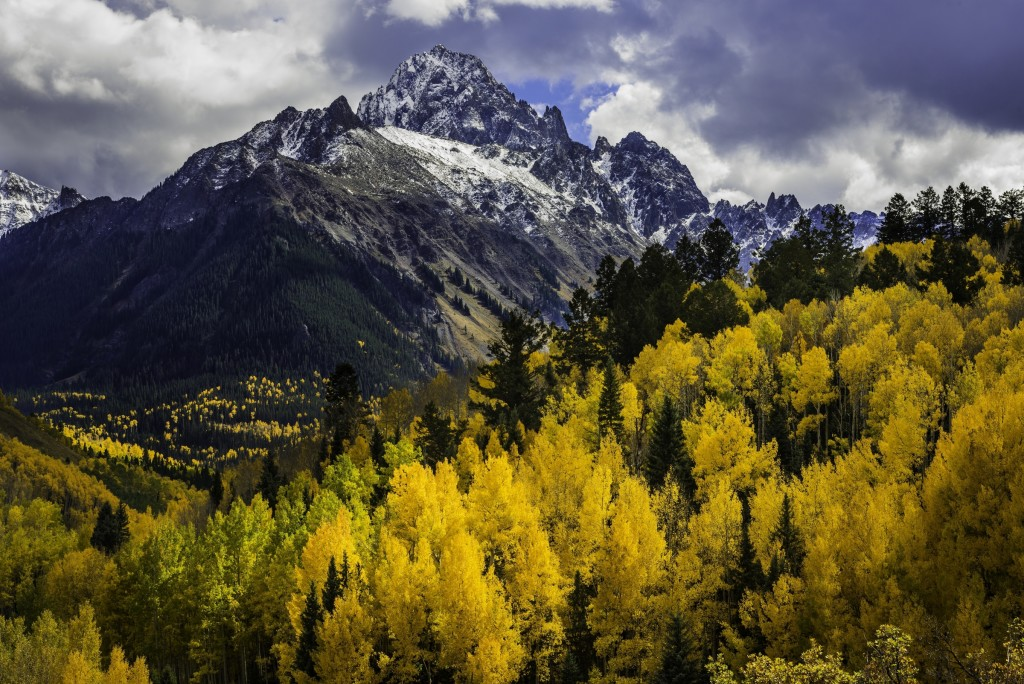 Mount Sneffels Fall Color